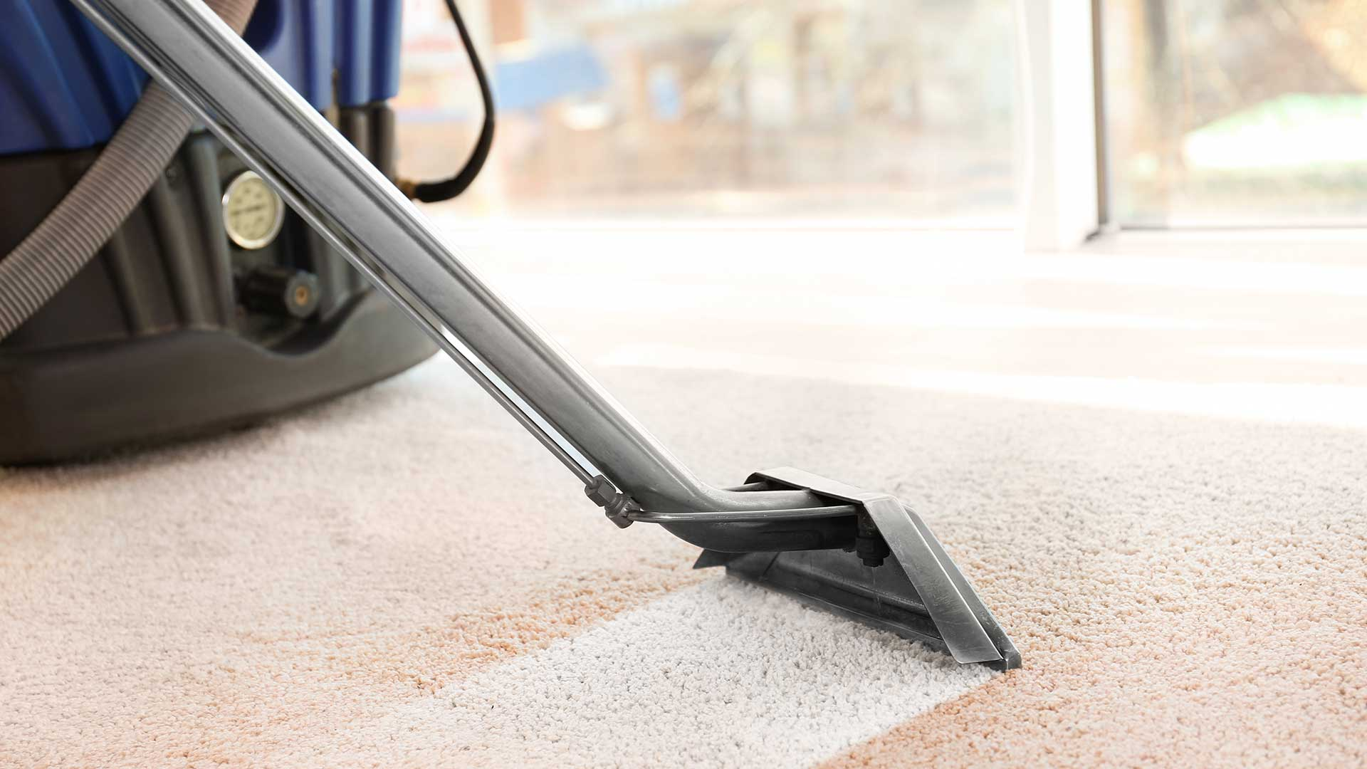 Carpet Cleaning Team Clean Supreme Cleaning Service